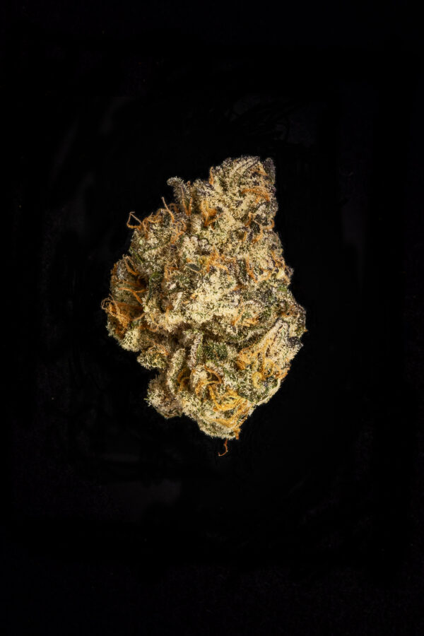 Lava Cake Weed Flower Close Up
